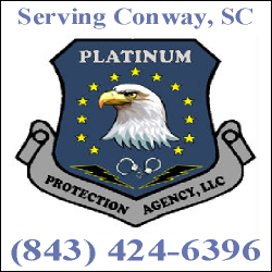 Platinum Protection Agency